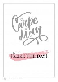 INSPIRATION (A3 Framed Print) - Carpe Diem - Pink