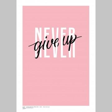 INSPIRATION (A3 Framed Print) - Never Give Up